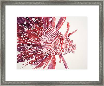 Lionfish Framed Print by Tanya L Haynes - Printscapes