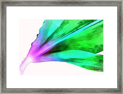 Liquid Lily Framed Print by Krissy Katsimbras