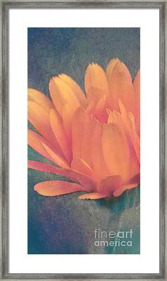 Little Flower Framed Print by Angela Doelling AD DESIGN Photo and PhotoArt