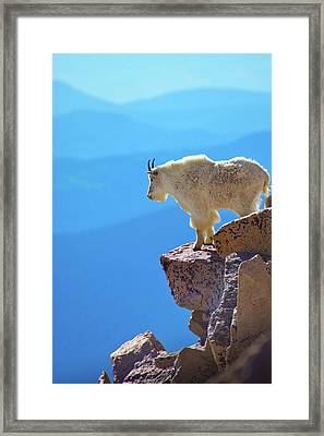 Living On The Edge Framed Print by John De Bord