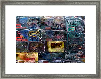 Lobster Traps Framed Print by Linda Drown