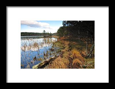 Garten Framed Prints