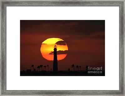 Loggerhead Sunset Framed Print