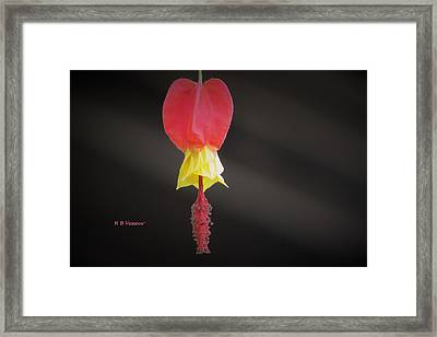 Lonely Framed Print by B Vesseur