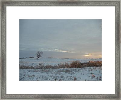 Lonesome Tree Framed Print