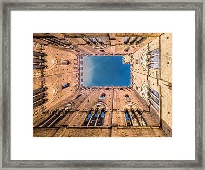 Looking Skyward Framed Print