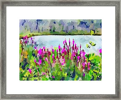 Loosestrife Blooming At Sleepy Hollow Pond Framed Print