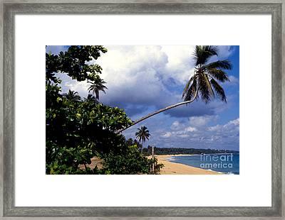 Los Tubos Beach Framed Print by Thomas R Fletcher