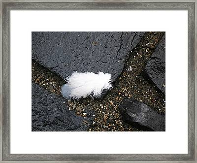 Lost... Framed Print by Mihail Antonio Andrei