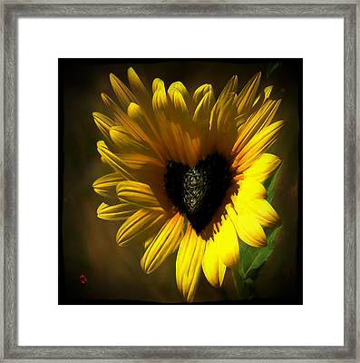 Love Sunflower Framed Print