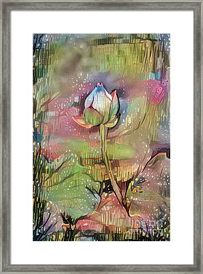 Lovely Waterlilies Framed Print