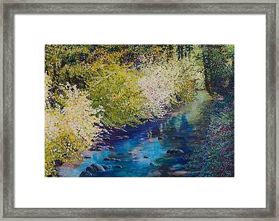 Luminous Framed Print by Lucinda  Hansen