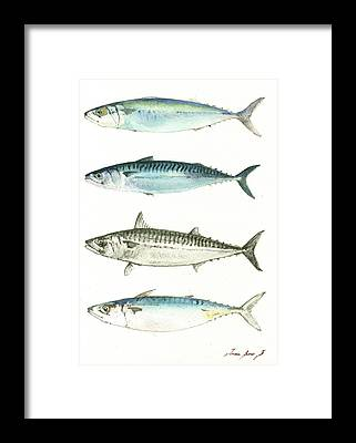 Fishing Framed Prints