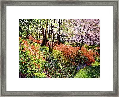 Magic Flower Forest Framed Print by David Lloyd Glover