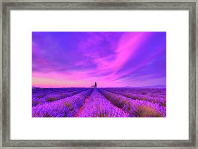 Magical Fields Framed Print