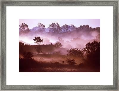 Magical Misty Morning Framed Print