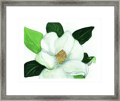 Framed Print featuring the painting Magnolia II by Joan Zepf