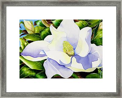 Magnolia In Leaves Framed Print