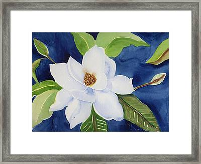 Magnolia Framed Print by Janet Doggett