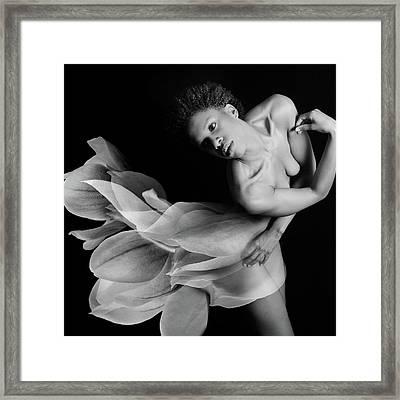 Magnolia  Framed Print by Mayumi Yoshimaru