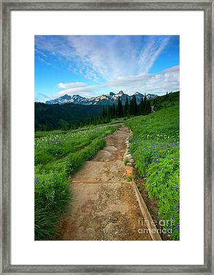Majestic Trail Framed Print