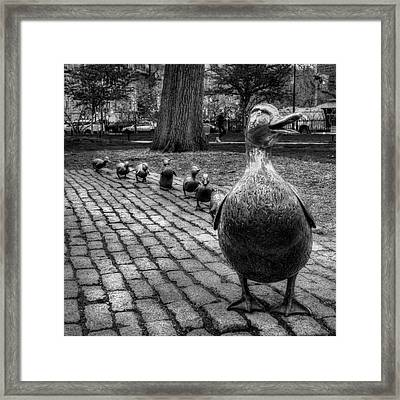 Make Way For Ducklings - Boston Public Garden Framed Print
