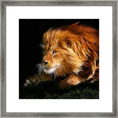 Male Lion Fractal Framed Print