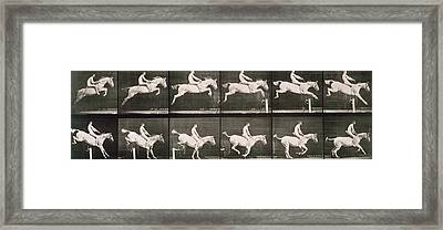 Man And Horse Jumping A Fence Framed Print