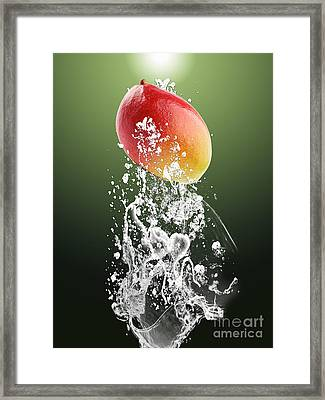 Mango Splash Framed Print