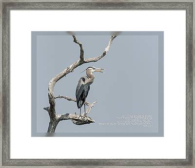Framed Print featuring the photograph Mark 1 2-3 by Dawn Currie