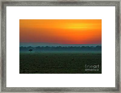 Framed Print featuring the photograph Masai Mara Sunrise by Karen Lewis