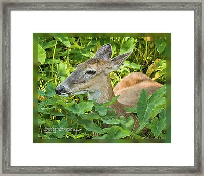 Framed Print featuring the photograph Matthew 5 9 by Dawn Currie