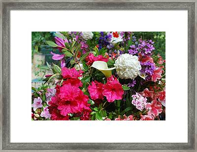 May Flowers Framed Print by Linda Sramek