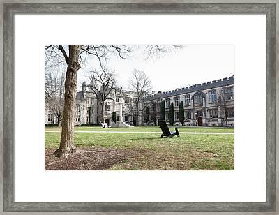 Mccosh And Dickinson Halls Framed Print