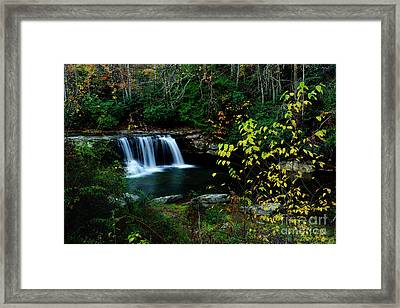 Mccoy Falls Birch River Framed Print by Thomas R Fletcher