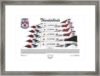 Mcdonnell Douglas F-4e Phantom II Thunderbirds Framed Print by Arthur Eggers