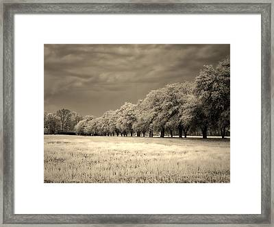 Meadow In Infrared Framed Print