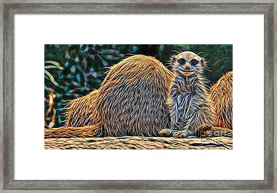 Meerkat Framed Print by Marvin Blaine