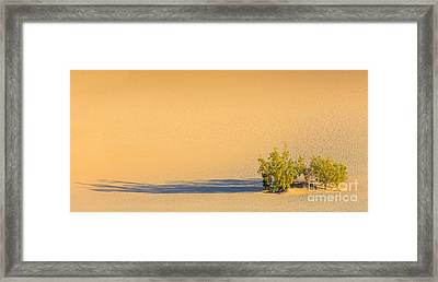 Mesquite Flat Sand Dunes In Death Valley National Park Framed Print by Henk Meijer Photography