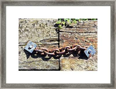Metal Chain Framed Print by Tom Gowanlock
