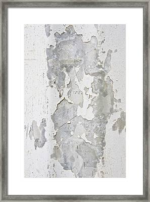 Metallic Surface Framed Print by Tom Gowanlock