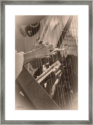 Michigan Renaissance Festival Harp Strings Framed Print by LeeAnn McLaneGoetz McLaneGoetzStudioLLCcom