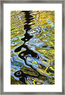 Mill Pond Reflection Framed Print