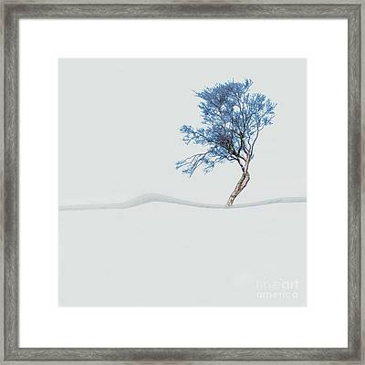 Mindfulness Tree Framed Print