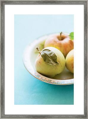 Mini Apples Framed Print