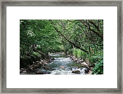 Minnehaha Creek Framed Print