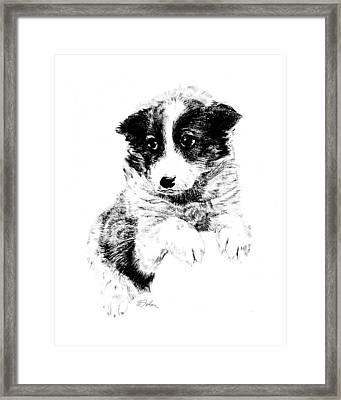 Miss Maggie Framed Print