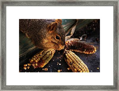 Miss Messy Framed Print