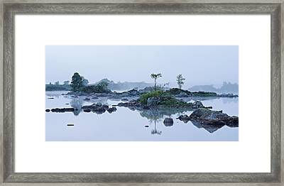 Mist And Trees Framed Print