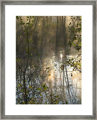 Misty Morning Framed Print by Ralph Baginski